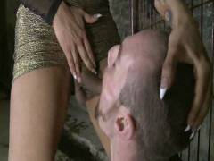 TS Seduction: The First Ever TS Gang Poke On TS Seduction – The Gangster Groupsex